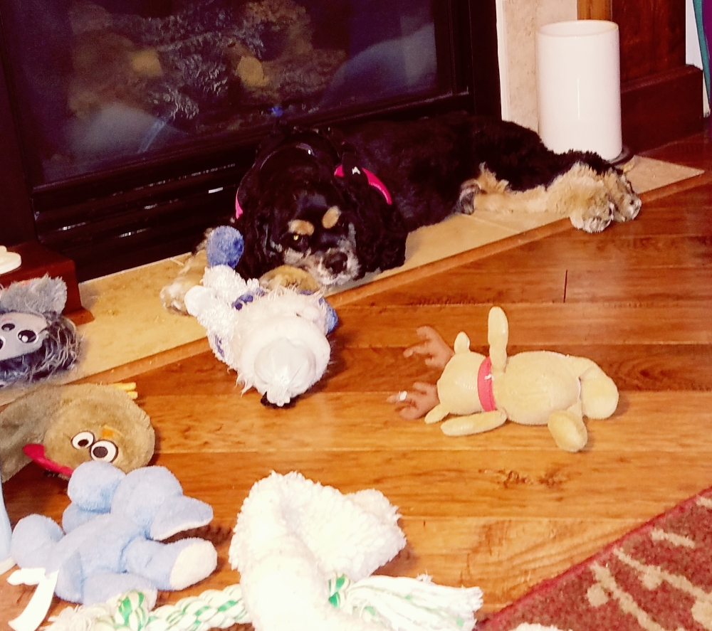 Benji & the Toys