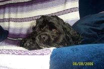Teddy - May 06_0003